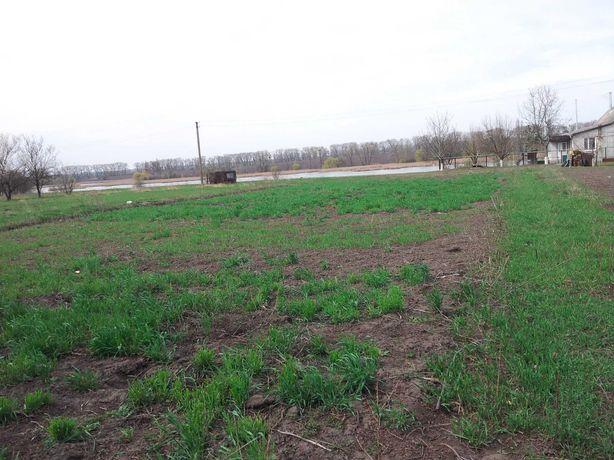 Продаю земельный участок в с.Тужылов