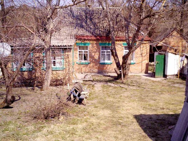 Дом в Вязивку Черкасская область