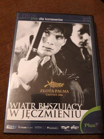 DVD Wiatr buszujący w jęczmieniu
