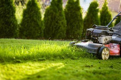 Koszenie trawy,przycinanie krzewów,glebogryzarka,pracę ogrodnicze