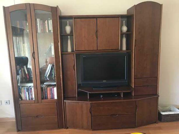 Móvel de TV com Biblioteca Integrada