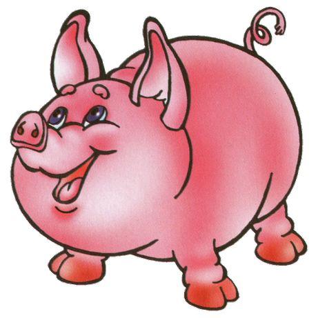 продам свиню. свиней. кабана.