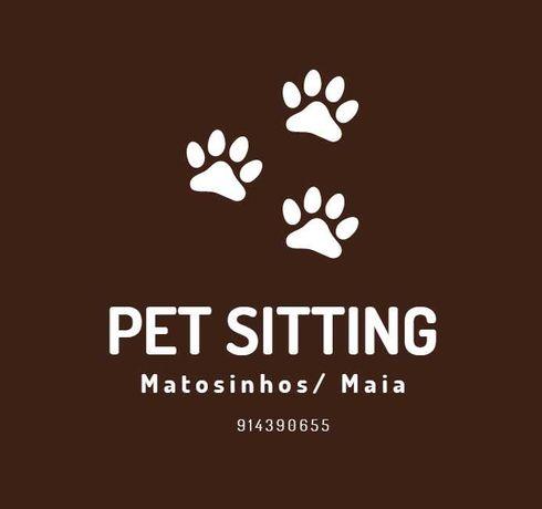 PET SITTING / cuidar e passear o seu animal de estimação