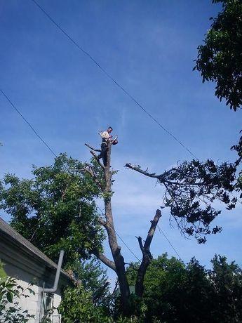 Спил деревьев; Автовышки 17м-22м. Нал/безнал