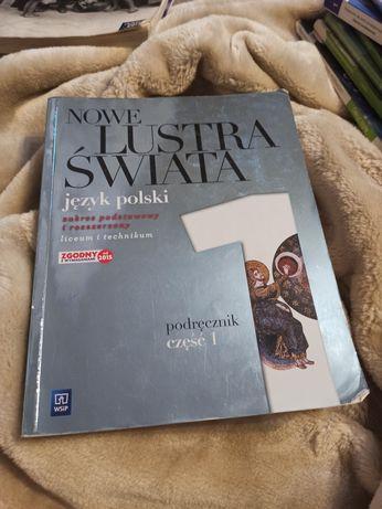 Język polski, nowe lustra świata cz1