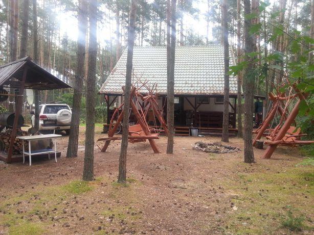 Dom w lesie nad zalewem sulejowskim.  Bezpośrednio