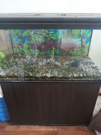 Akwarium 270 litrow komplet(szafka filtry grzalki itp)