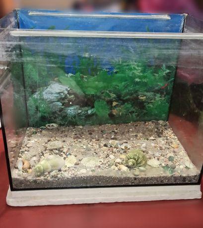 Продам аквариум 70 л