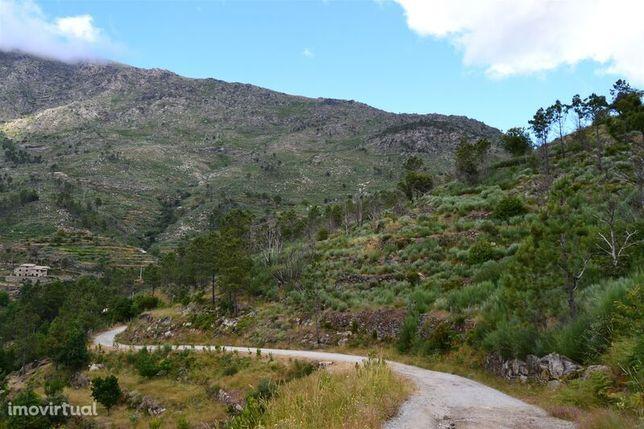 Quinta V0 Parque Natural da Serra da Estrela Cortes do Meio Covilhã