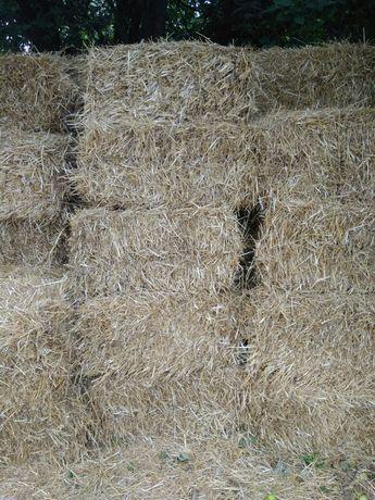 Тюки соломи пшеничної