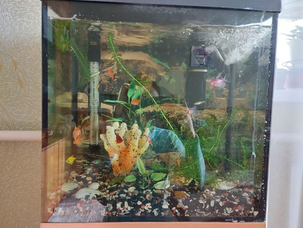 Продам аквариум на 30 литров
