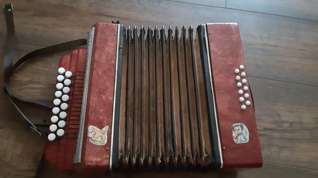 Harmonia akordeon Małysz