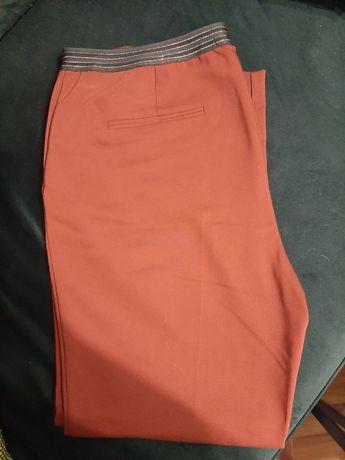 Spodnie eleganckie rude