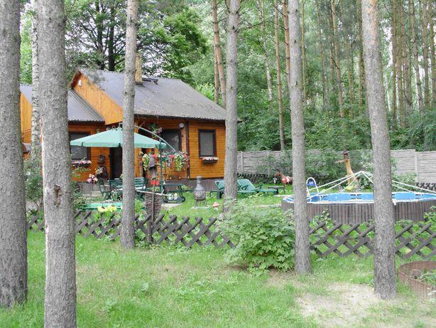 Działka z domem w Rydzynkach