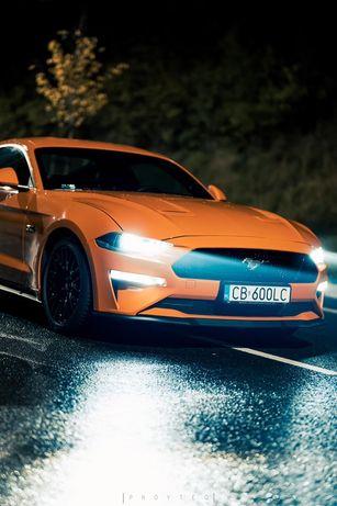 Wynajem Ford Mustang GT 5.0 V8 Gdansk Bez Kaucji KPRcars Trojmiasto