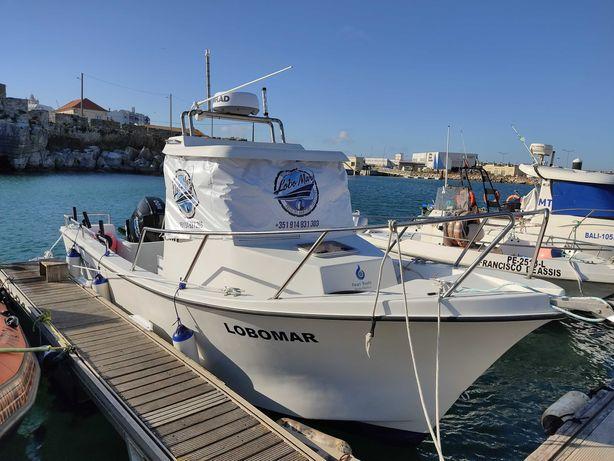 Barco 7 mt semi novo