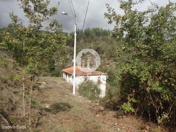 Quintinha com moradia em Armil