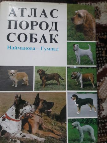 Для любителей собак