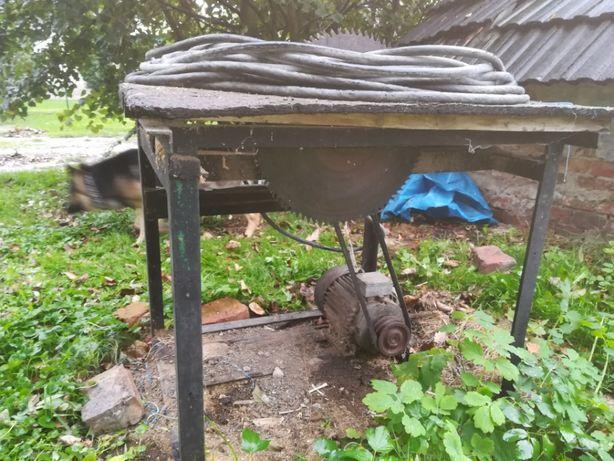 Cyrkulatka Krajzega (pilarka stołowa) do drzewa