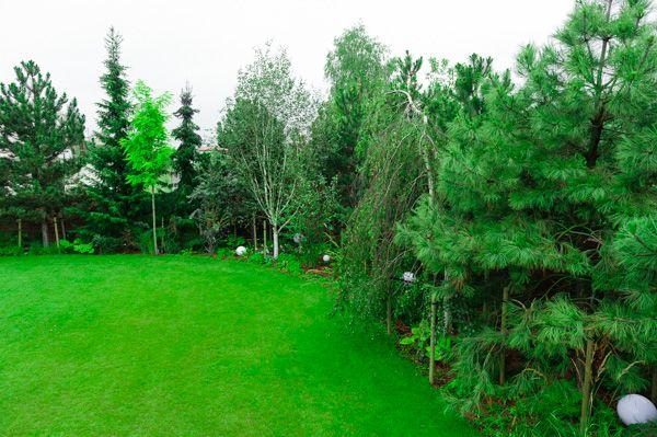 Pielęgnacja terenu zielonego, pielęgnacja ogrodu, usługi ogrodnicze