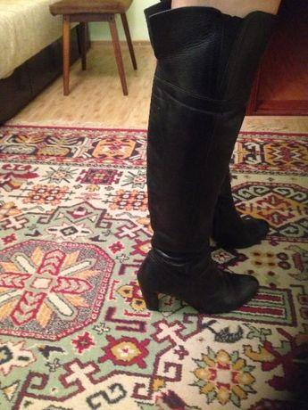 чоботи жіночі