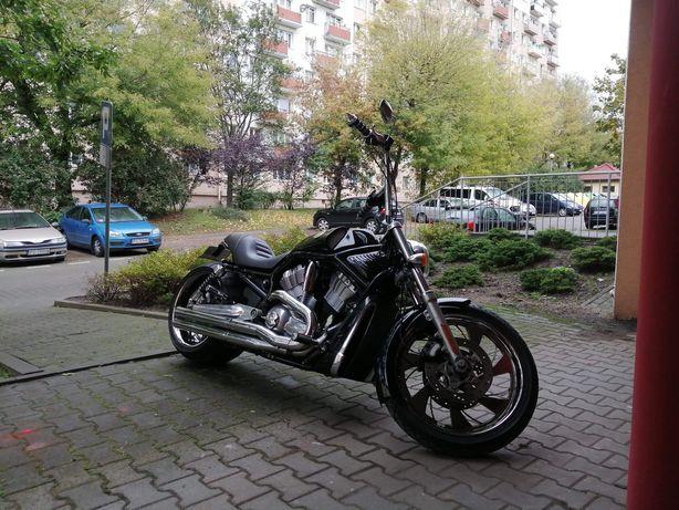 Harley V-rod 300mm, custom, hardcore