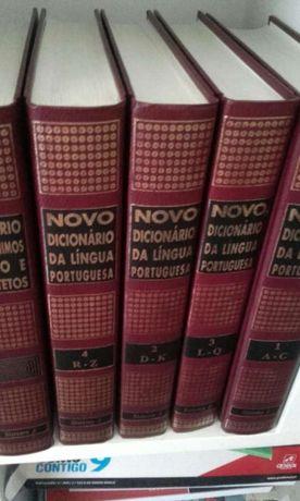 Dicionário de lingua portuguesa