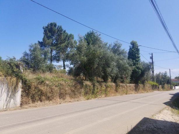 Terreno p construção 1800m2 Pinheiro – Poiares