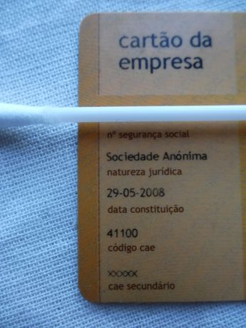 S.A. Sociedade Anonima CAE 41100