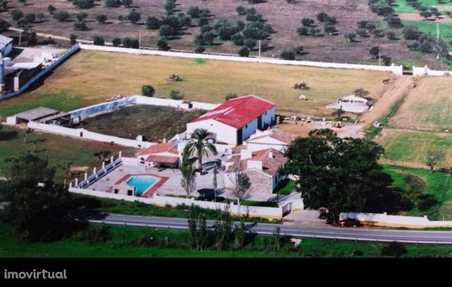 Quinta localizada às portas da cidade de Évora