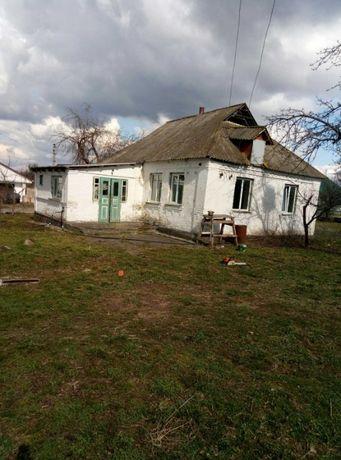 Продам будинок, хату в селі Шамраєвка по вул.Червоноармійська 19.