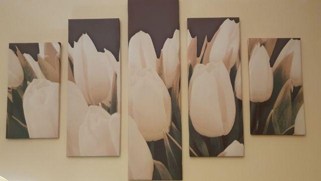 Obraz kwiaty tulipany 5w1 5 obrazów tworzy całość stan idealny 100%