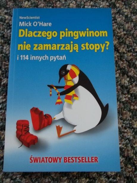 """Książka """"Dlaczego pingwinom nie zamarzają stopy?"""""""