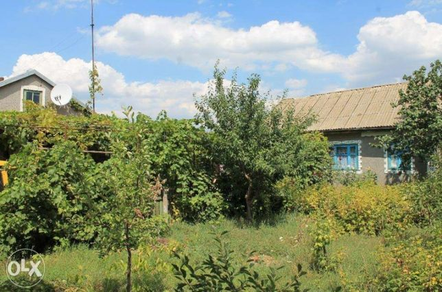 Дом дача в экологически чистом районе, село Кагарлык