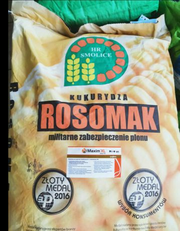 Kukurydza Rosomak FAO 250-260 nas80tyś. i wiele innych