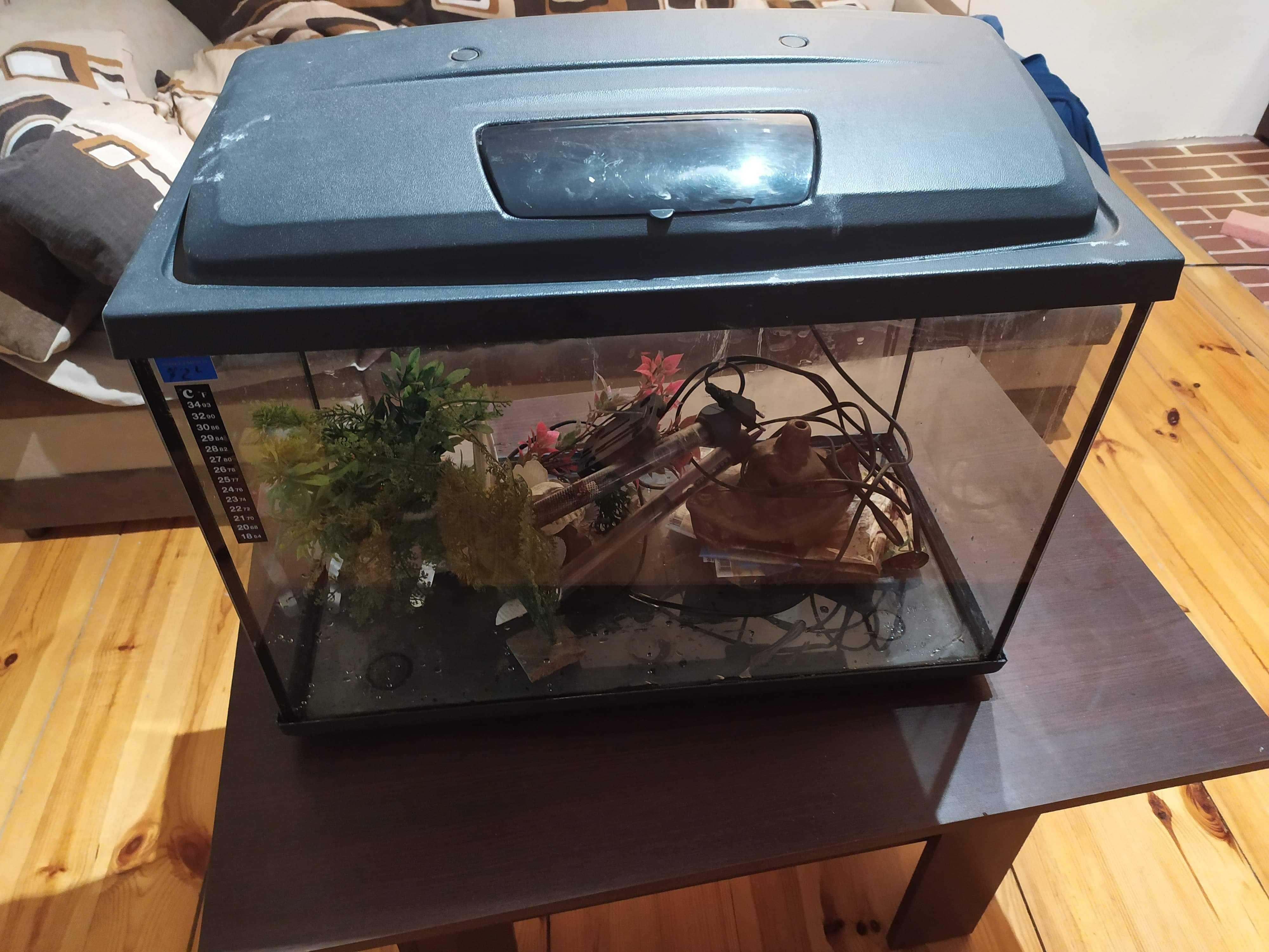 Akwarium 72l z wyposazeniem