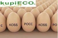 Яйца инкубационные с доставкой к Вам
