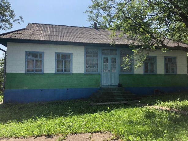 Господарство у селі Кулішівка з усіма комунікаціями та садом