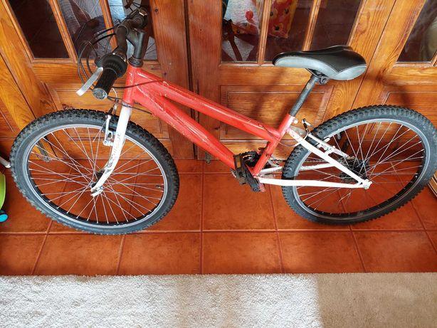 Bicicleta twin roda 24