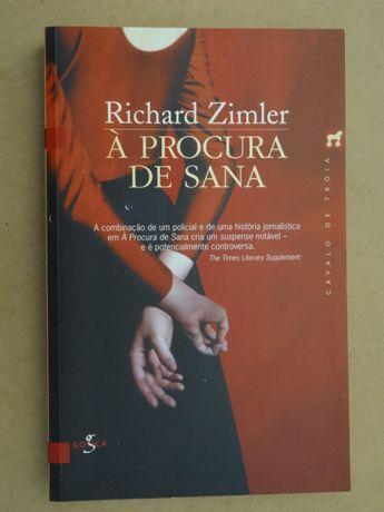 À Procura de Sana de Richard Zimler