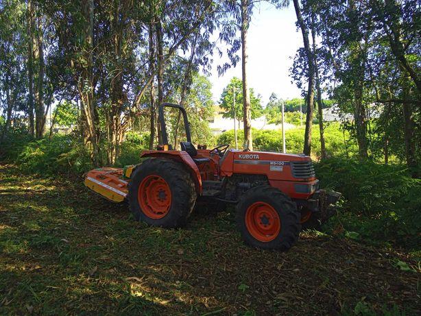 Limpeza de terrenos e florestas