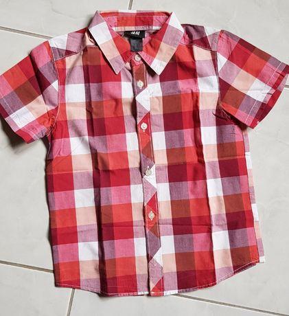 H&M, koszula, koszulka chłopięca, krata pastelowa, idealna, bluzka