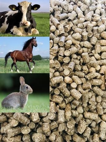 Susz z traw, pellet z traw dla bydła,koni,królików - opakowania 25kg