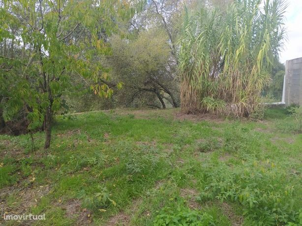 Terreno para construção a 5 km da cidade de Tomar no centro de Portuga