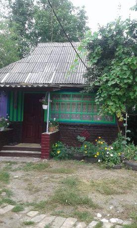 Продам будинок в  Лохвицькому  районі.