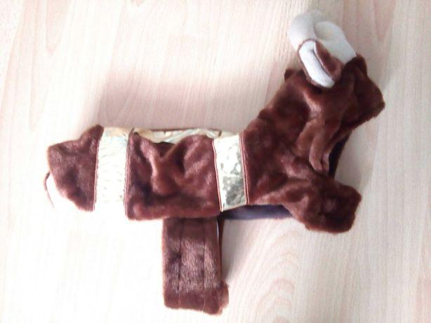 Ubranie ubranko dla psa kota renifer r. S