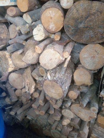 Lenha  pinho  seca cortada madeira  lareira firewood
