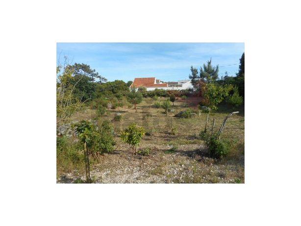 Terreno para construção localizado na Freguesia de Reguen...