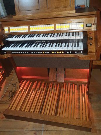 Organy kościelne, cyfrowe, Johannus Opus 10. Ideał.