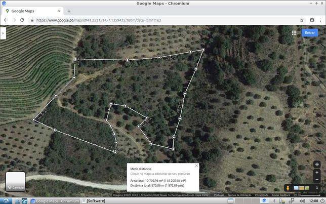 Desfrute da natureza terreno  98 oliveiras junto  barragem da vilariça